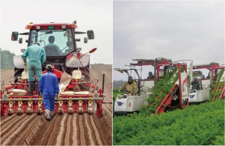 農作業受託・一般労働者派遣業